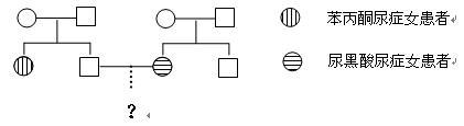 如何规范书写遗传图解? - 穷开心 - 生命因教育而精彩