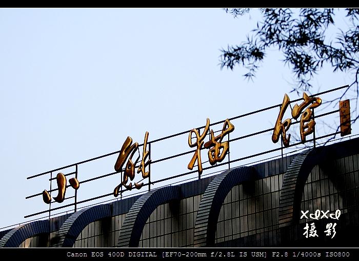 """【福州风景】 """"灾区熊猫,新年好"""" - xixi - 老孟(xixi) 旅游摄影原创作品"""