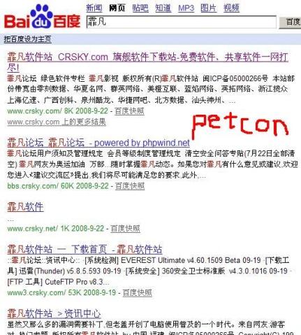 百度的搜索汉字的结果