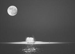 (征文)十五的圆月(原) - 风中白帆 - 风中白帆