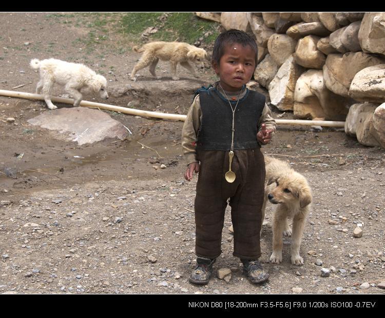 追梦阿里___珠峰的孩子 - 西樱 - 走马观景