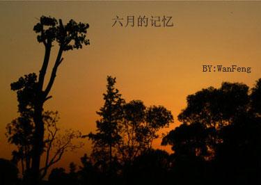 [晚风]六月的记忆 - 晚风 -