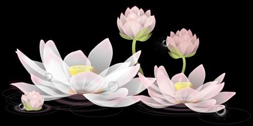 独享午夜时分 - 春暖花会开 - 春暖花会开的BLOG