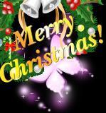 圣诞快乐,新年幸福!!! - 马洪涛 - 我的博客