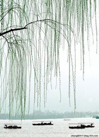 《听春》(原创) - 空山听禅 - 岁月流金