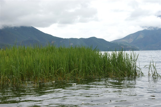 确如仙景泸沽湖 - 明心 - 明心的博客