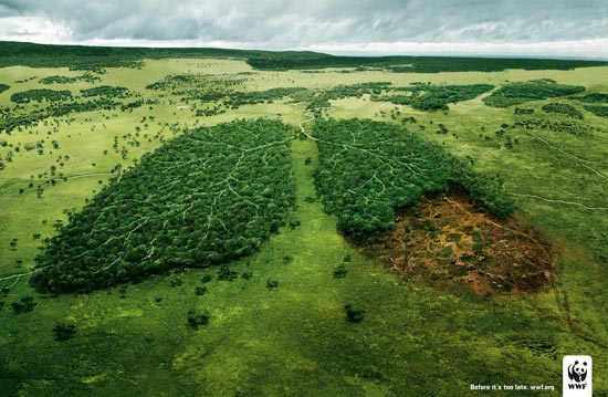 关于保护环境的广告语