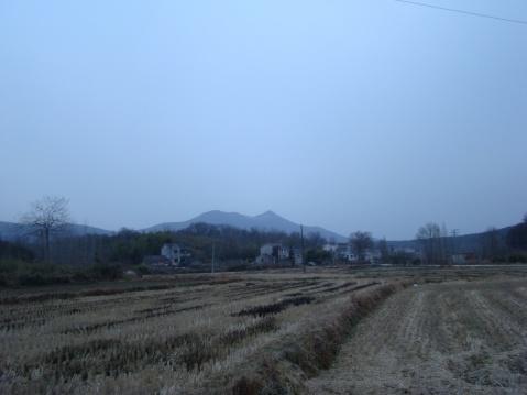 冬 日 山 野 - 雪痴 - 暮春的野蔷薇