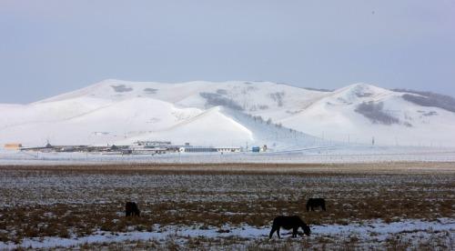 用小白拍坝上雪景 - 东哥色影作坊的日志图片
