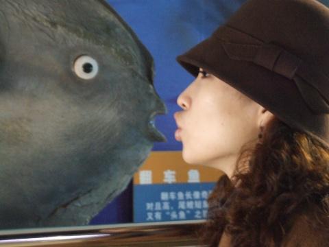 oh 海底世界 - 查拉图 - 查拉图!觉醒---------
