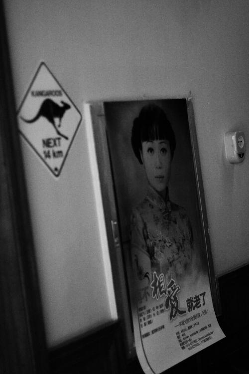 幸福大街南巡记(4) - 吴虹飞 - 吴虹飞