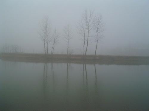 http://album.sina.com.cn/pic/485fe2d543fd04d15bff1
