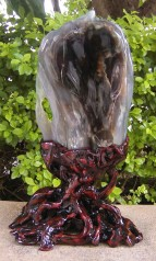 """""""树化玉""""收藏品的筛选与收藏机遇[原创] - 山喜琦廊-山喜 - 山喜琦廊的博客"""