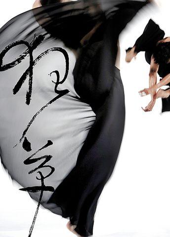 2倍速快进云门——记舞台视觉大师林怀民(转杂志评论) - 使者--李堂吉诃德白 - 中国舞蹈联盟系列博客 ——说舞