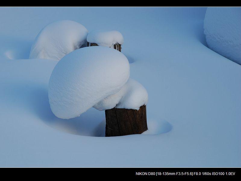 银白假期___被忽略的雪乡风景 - 西樱 - 走马观景