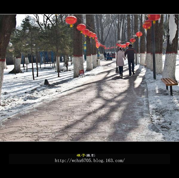 【原创摄影】走向春天的日子里 - 雄子 - 雄子言语