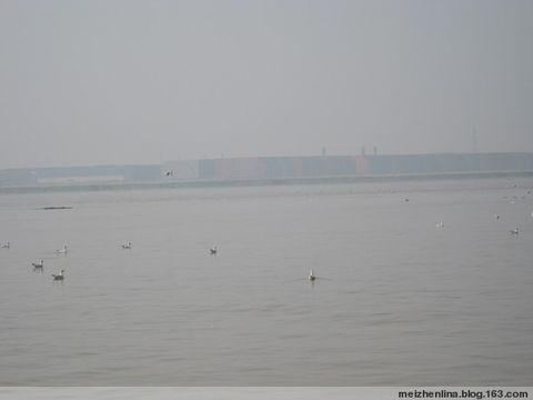 塘沽海上一日游四首 - 野狂人 - 好人园——和谐的家园