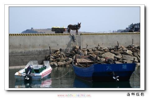 《小岛掠影》(之二) - 海狮 - 海狮de视觉空间