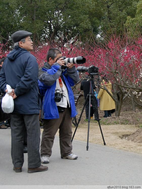 采花人 - qfjun2010 - qfjun2010的博客