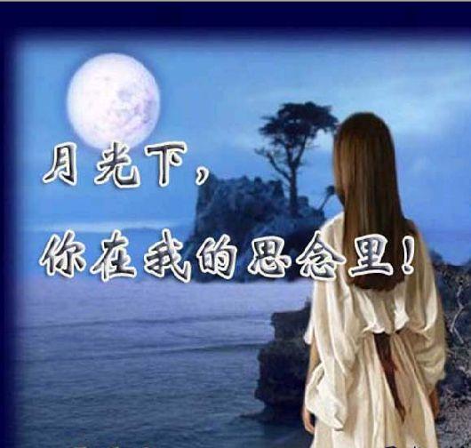引用 [原创]月光下你在我的思念里 - 冰芯雪蕊 - 冰天雪地的足迹