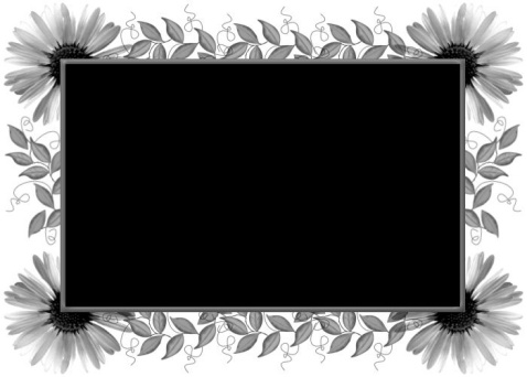 黑色背景图片 - 华山梅 - 华山梅欢迎您