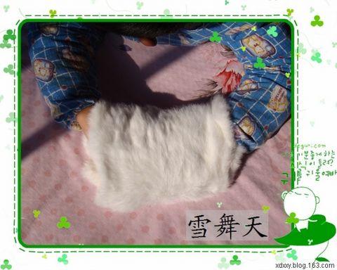 兔毛手筒 - 画画 - 我的博客
