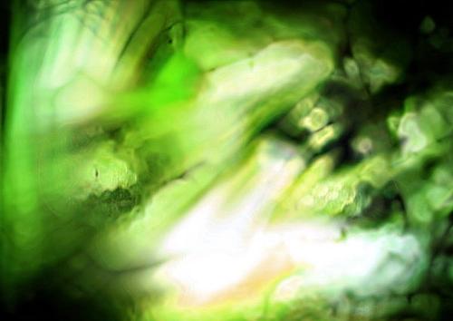 【PS教程】春诵夏弦~绿色古风签~ - f12lian - 缘份的天空