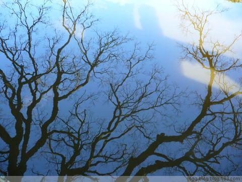 〖原创摄影〗冬季的普陀山依旧美丽 - 妙心吉祥 - 妙心吉祥 网易博客