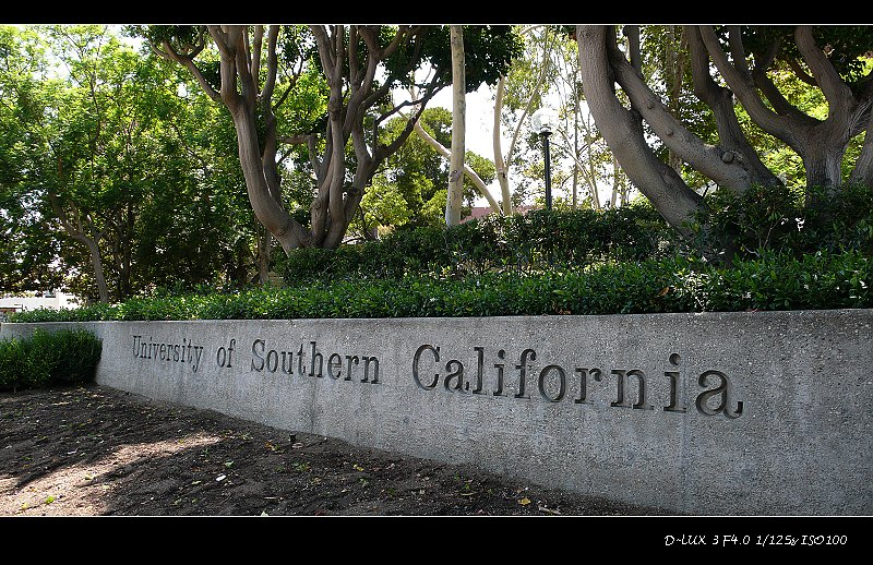 加州阳光(一) - 西樱 - 走马观景