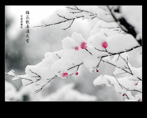 """七律  冬韵   和""""梦吟天涯""""《秋感》  - 十年剑 - 十年剑的博客"""