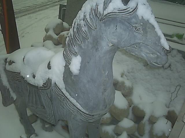 2006年末北京最后一场雪 - 潇彧 - 潇彧咖啡-幸福咖啡