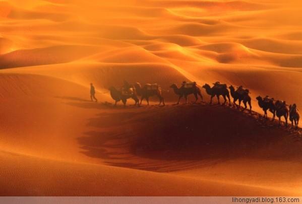 大漠豪情【疏勒河的红柳原创】  - 疏勒河的红柳 - 疏勒河的红柳