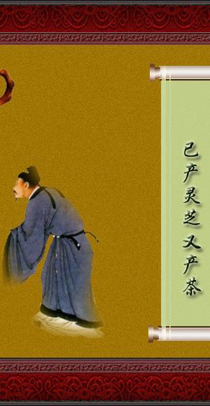 【千年古茶】欣赏(转载) - 逢春草木 - 逢春草木~~~欢迎你