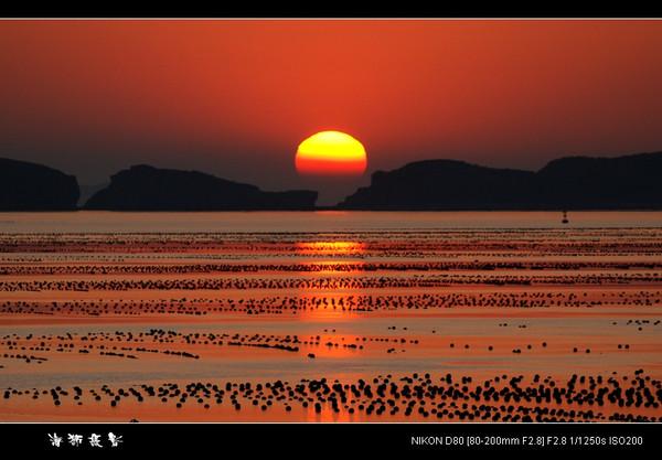 [原创]  夕阳红 - 海狮 - 大连海狮的博客