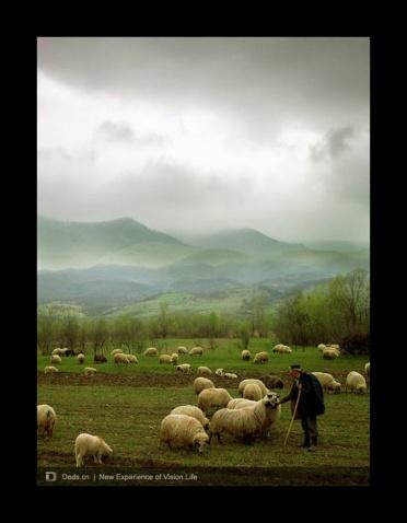 摄影师Floriana Barbu风光纪实摄影欣赏 - 五线空间 - 五线空间陶瓷家饰