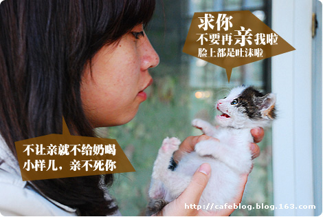 臭臭猫日记21-傻样+大奋的美女粉丝们 - cafe - 许宁的博客 cafe blog