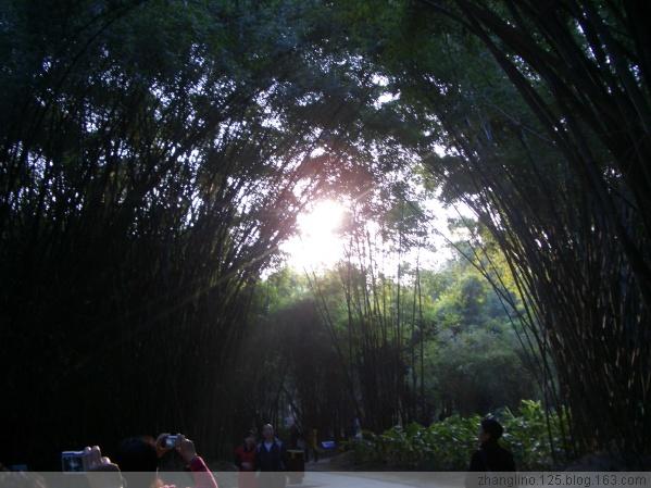 快乐的福州,厦门之旅(一) - zhanglino.125 - 晋娘的博客