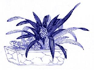转载:中国传统吉祥图案与寓意(植物类)博客