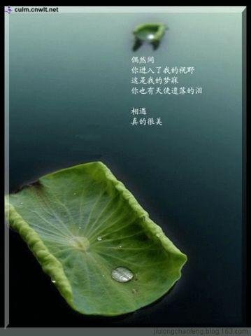 心 曲 - 九龙朝凤 - 九龙朝凤的文学博客