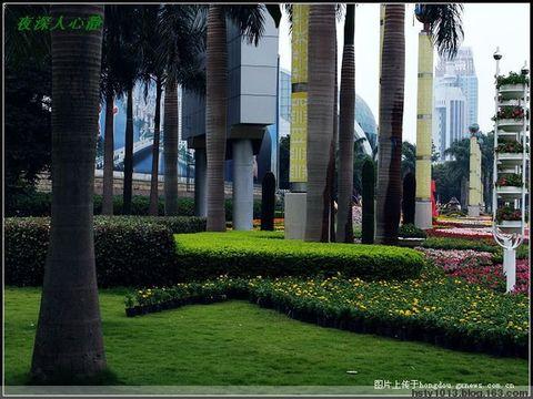 全国文明城市南宁 一座到处可以呼吸到绿色的现代化都市