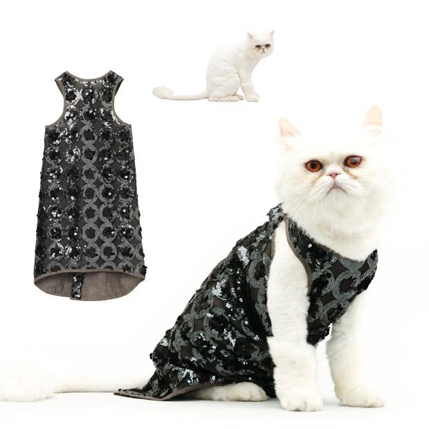 知名品牌推出2011猫咪时尚月历,所秀时装售价500美金(组图) - 刻薄嘴 - 刻薄嘴的网易博客:看世界