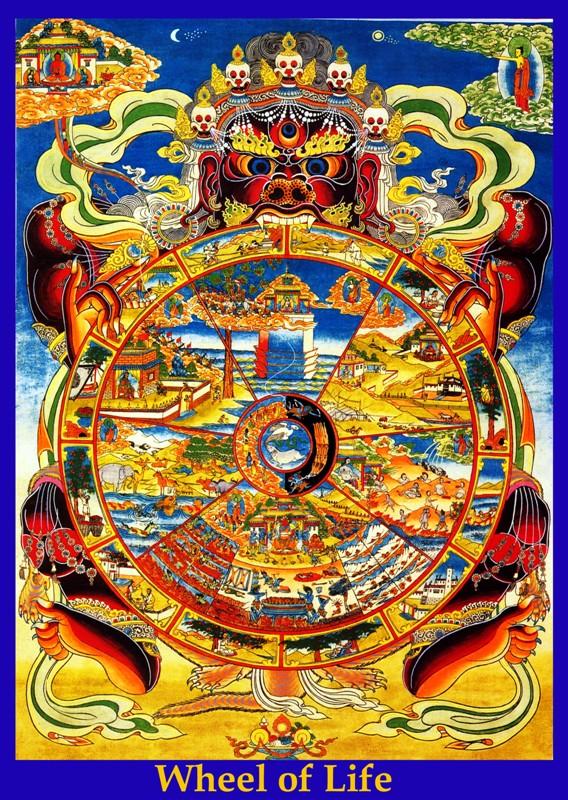 十二因缘 - 圆力 - 大悲缘众生 智慧缘佛果