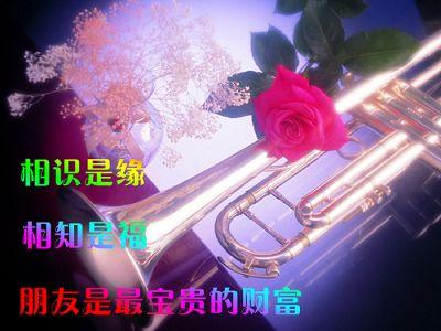 情人节快乐 - 肖梅 - 我的博客