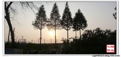 [原创]阳澄湖中莲花岛 - 随缘 - 学 而 时 习 之,不 亦 悦 乎。