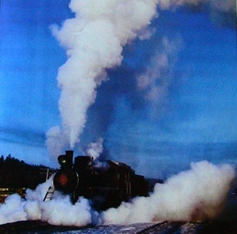 蒸汽机车 - 荷塘月色 - 荷 塘 月 色