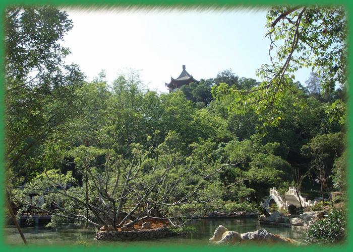 西湖新印像——大梦山景区(三) - 老猫侠 - 老猫侠的博客