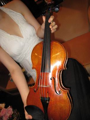 传说中的天价小提琴 - 刘放 - 刘放的惊鸿一瞥