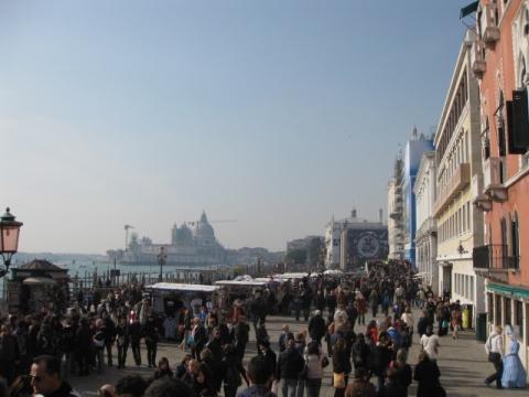 狂欢威尼斯 - 旷野玫瑰 - 旷野玫瑰