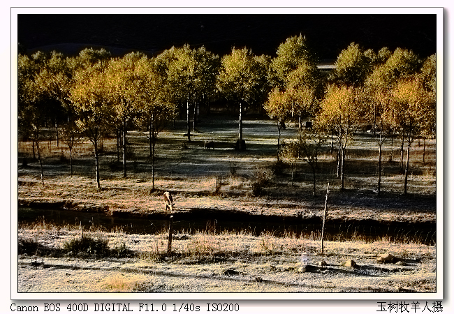 【原创摄影】玉树--金秋畅想 - 玉树牧羊人 - 玉树牧羊人的博客
