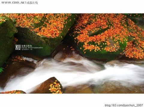 光雾山旅游风景名胜 - 快乐老头 - liangdahuai2008的博客